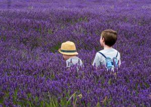 Que faire avec ses enfants en Provence ?